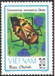bacint-stamp.jpg
