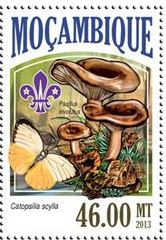 bacsyc-stamp.jpg