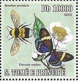 baer-stamp.jpg