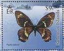bbpts-butterfly-papilio-toboroi.-stamp-jpg.jpg