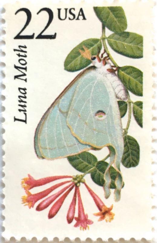 bhasfla-stamp.jpg